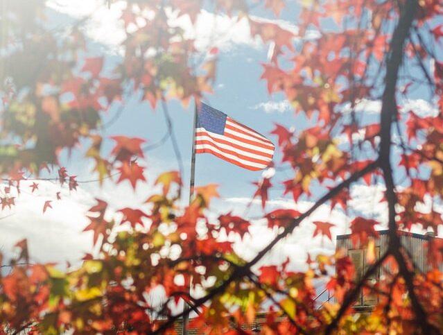 American flag through the trees